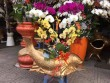 Cá chép mạ vàng 'cõng' hoa lan đắt khách ngày ông Táo