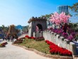 """Hạ Long: Du khách mãn nhãn với lễ hội """"Kỳ quan muôn sắc hoa"""" độc lạ"""