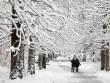 Paris đẹp lạ lùng dưới 15 cm tuyết phủ