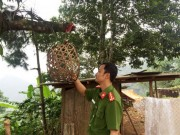 An ninh Xã hội - Kinh thiên những vụ thảm án đồng rừng và chiếc lồng gà đón sóng