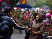 Cận cảnh khu chợ hoa cổ xưa nhất giữa lòng Hà Thành