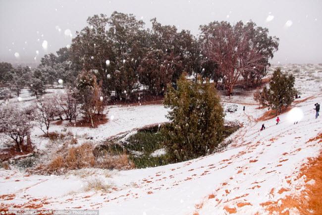 Du khách đổ xô tới sa mạc Sahara ngắm tuyết rơi - 2