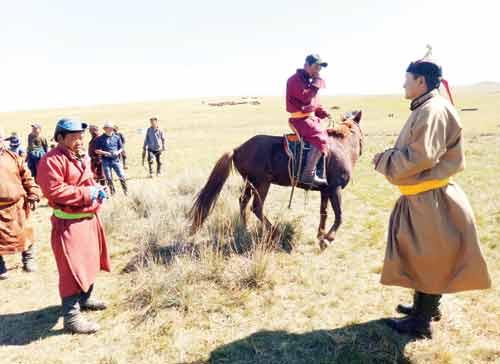 Khám phá Lễ hội đóng dấu ngựa ở quê hương Thành Cát Tư Hãn - 2