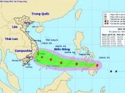 Bão Sanba vào Biển Đông, TP.HCM lên phương án ứng phó trong ngày Tết