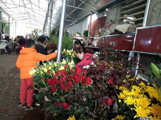 Bất ngờ: Hoa hồng thờ Tết đắt gấp 10 lần mà vẫn cháy hàng - 1