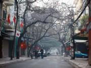 Tin tức trong ngày - Thời tiết mùng 1 Tết: Miền Bắc lất phất mưa xuân, miền Nam nắng đẹp