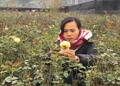 """Đầu năm, tới xông vườn thứ """"Nữ triệu phú"""" hoả đỏ 8X ở Sơn La - 1"""