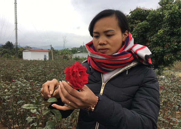 """Đầu năm, tới xông vườn thứ """"Nữ triệu phú"""" hoả đỏ 8X ở Sơn La - 4"""
