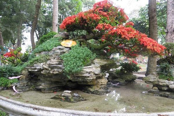 Mùng 3 tết, rủ nhau đi nhắm nhía 'kỳ hoa dị thảo' ở Sài Gòn - 10