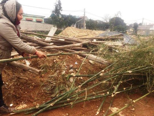 Độc đáo chợ bán cây nêu ngày Tết - 5