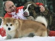 Nghệ thuật thuần dưỡng thú cưng của Tổng thống Putin