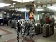 """Bắt gặp những hành khách """"quái dị"""" đi tàu điện ngầm"""