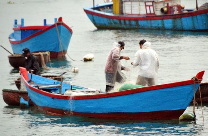 Ngư dân Bình Định trúng đậm ở chuyến ra khươi đầu năm - 1