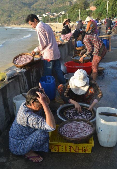 Ngư dân Bình Định trúng đậm ở chuyến ra khươi đầu năm - 2