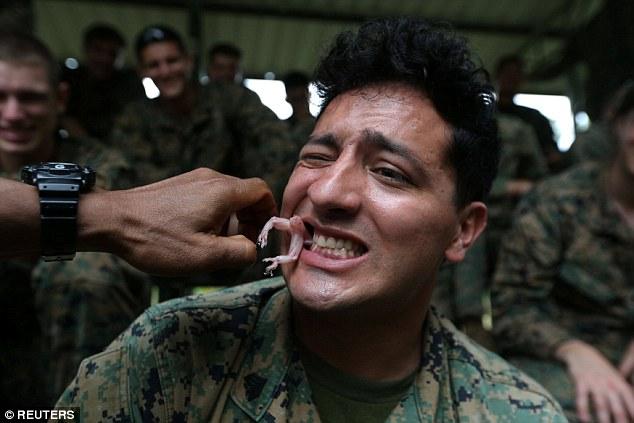 Xem lính Mỹ bắt rắn hổ mang, cắt đầu uống máu trong rừng Thái Lan - 3