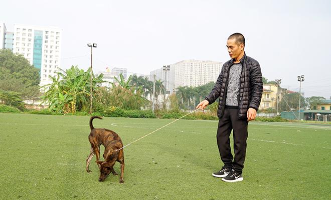 Thực hư thông tin Việt Nam đang sở hữu giống chó thông minh nhất nhì thế giới - 1