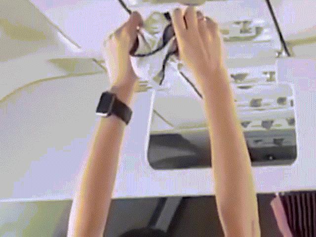 Nga: Bắt hành khách quấy rối tình dục, làm loạn trên máy bay - 3