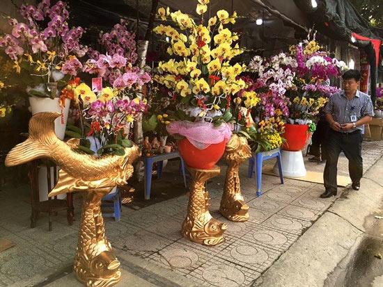 Người Việt chi 18 triệu USD mua hoa ngoại ngắm Tết - 1