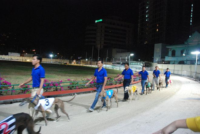 Đầu năm Mậu Tuất đi xem đua chó ở trường đua lớn nhất Đông Nam Á - 4