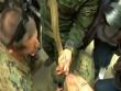 Xem lính Mỹ bắt rắn hổ mang, cắt đầu uống máu trong rừng Thái Lan