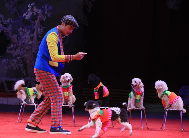 Gặp nữ diễn viên biểu diễn xiếc chó lâu nhất Việt Nam - 3