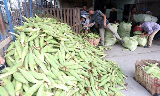 Chợ chỉ bán duy nhất một mặt hàng ở Sài Gòn - 3