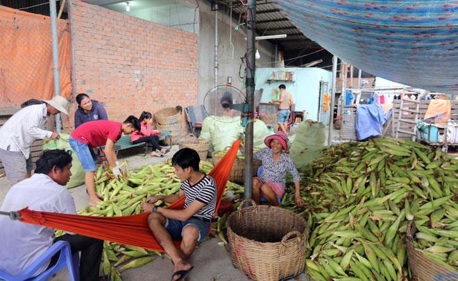 Chợ chỉ bán duy nhất một mặt hàng ở Sài Gòn - 2