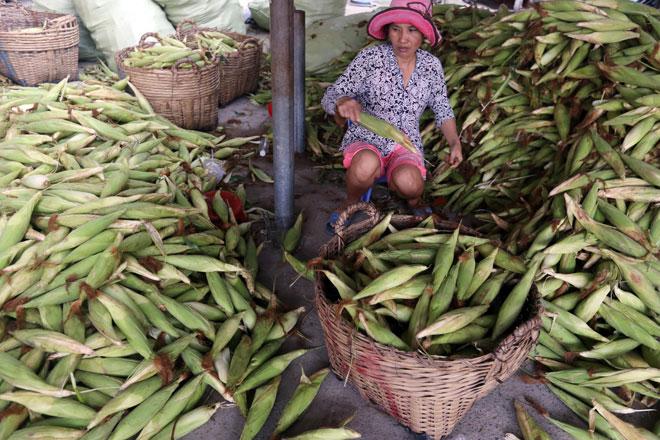 Chợ chỉ bán duy nhất một mặt hàng ở Sài Gòn - 5