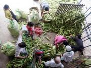 Chợ chỉ bán duy nhất một mặt hàng ở Sài Gòn