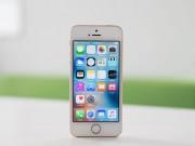 iPhone SE 2 vẫn mi nhon với màn hình cỡ 4,2 inch