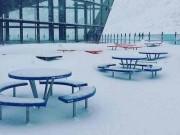 New Zealand chìm trong tuyết giữa mùa hè