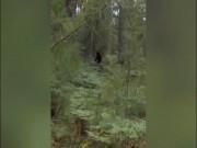 Phát hiện Quái vật Chân to trong rừng cùng 2 con?