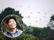 Từ chối tiền tỉ, lão nông hơn 30 năm bảo vệ đàn chim trời
