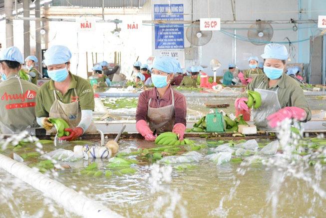 Bất ngờ đồng người mua hàng Việt Nam giàu nhất thế giới - 1