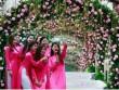 Tháng 3 tới, Hà Nội đón lễ hội Hoa Hồng Bulgaria trở lại