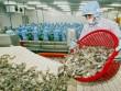 Nông sản xuất khẩu kiếm bộn tiền hai tháng đầu năm