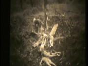 Công bố video nô lệ tình dục HQ bị Nhật thảm sát thời chiến