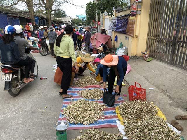 """Chở tỏi tươi nơi khác về đảo """"dán mác"""" trồng tại Lý Sơn bán giá cao - 1"""