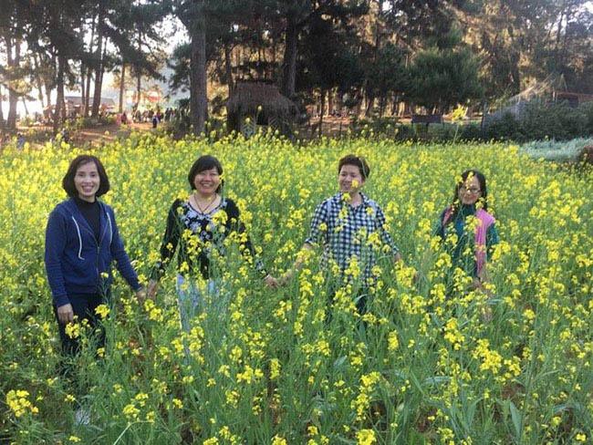 Mãn nhãn ngắm nhìn vườn hoa cải vàng óng trên cao nguyên Mộc Châu - 10