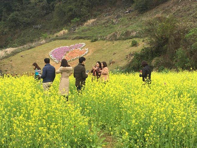 Mãn nhãn ngắm nhìn vườn hoa cải vàng óng trên cao nguyên Mộc Châu - 2
