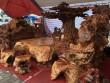 Chiêm ngưỡng bộ kỳ mộc Tứ linh quần tụ bằng gỗ nu nghìn năm tuổi giá 3,5 tỷ đồng