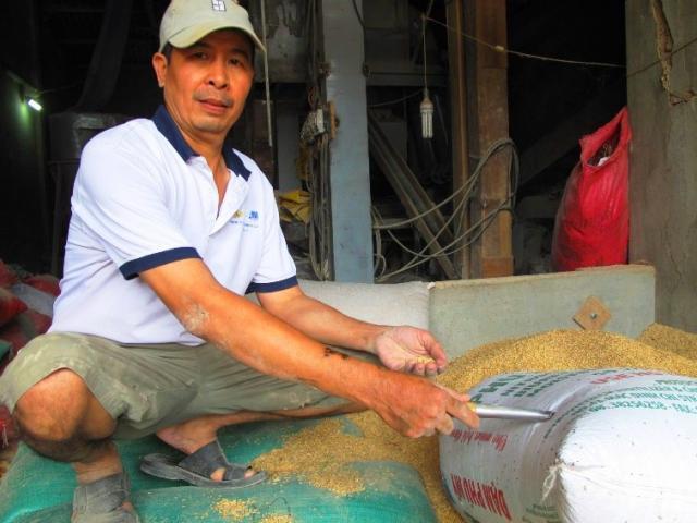 Nhiều người nhận là chủ nhân 3 cây vàng trong bao lúa