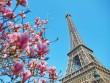 Air France tưng bừng kỉ niệm 88 năm đường bay Pháp – Việt