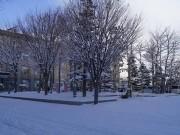 Theo chân một nghiên cứu sinh ngắm tuyết phủ trắng, lãng mạn như một giấc mơ