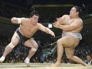 """Thế giới ngầm sumo dậy sóng: Hoen ố vì  """" kẻ bệnh hoạn """"  và côn đồ"""