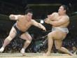 """Thế giới ngầm sumo dậy sóng: Hoen ố vì """"kẻ bệnh hoạn"""" và côn đồ"""