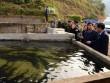 """Làm ăn lạ: Nuôi 8.000 cá đặc sản trên núi cao, tiền """"đổ"""" về ùn ùn"""