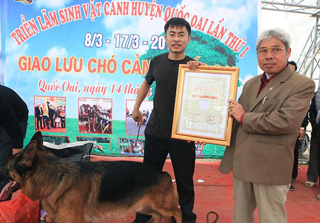 Chó cảnh đua tài, sắc cùng chó nghiệp vụ ở Hà Nội - 13