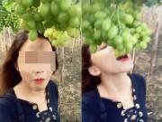 """Nữ phượt thủ  """" bóc phốt """"  vườn nho Ninh Thuận chính thức lên tiếng"""
