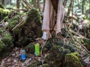 Bên trong khu rừng tự sát ám ảnh nhất nước Nhật